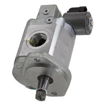 12Volts 6L Pompe Hydraulique à Double Effet avec Réservoir en Fer Remorque Auto