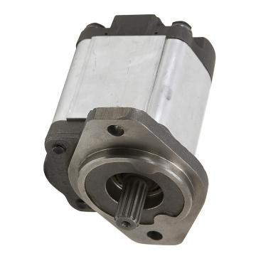 Pompe hydraulique pompe engrenages externe gear pump standard europeen groupe 2