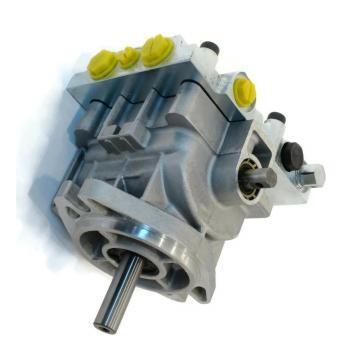 JCB Pièces - Pompe Hydraulique Pression Plaques Kit, 4 (Pièce Numéro 20/902703)