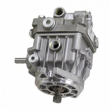 BOSCH REXROTH hydraulic axial piston fixed pump A17FO063/10NLWK0E81-0 R902162394
