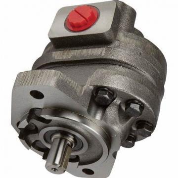 Pompe A Huile 10000PSI Pompe Hydraulique Electrique Soupape Manuelle Pompe
