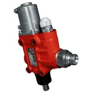 """Clapet anti-retour hydraulique double piloté interne check valve taraudé 3/4"""""""