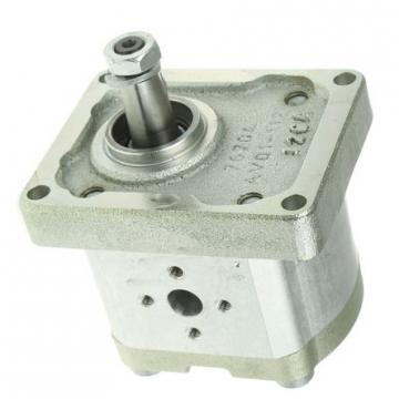 Hydraulique pompe à engrenages BOSCH REXROTH 0 510 665 381