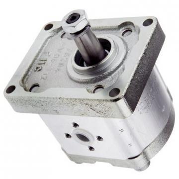 Hydraulique pompe à engrenages BOSCH REXROTH 0 510 766 313