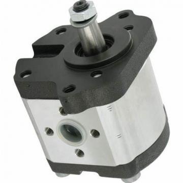 MANNESMANN REXROTH 1pf2v2-20/16,6rud01m pompe hydraulique 424770/6 v45746-used -