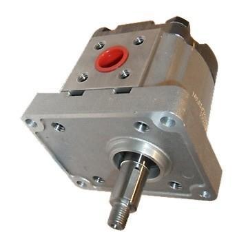 Nachi Variable Aube Pompe VDR-1B-1A3-E22 CNC Hydraulique Moteur Mazak V-15 Moule